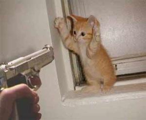 roubo-o-que-fazer-mao-armada