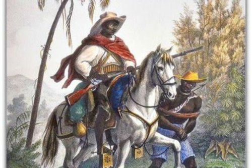 Negros de direita não são capitães do mato.